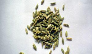 spice-rack-4-malamantra-sxc