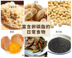 預防及舒緩乳腺炎 不可不知 卵磷脂 跟石頭奶塞奶說掰掰