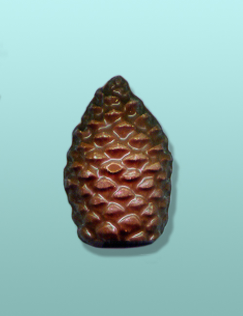 Chocolate Pine Cone Party Favor