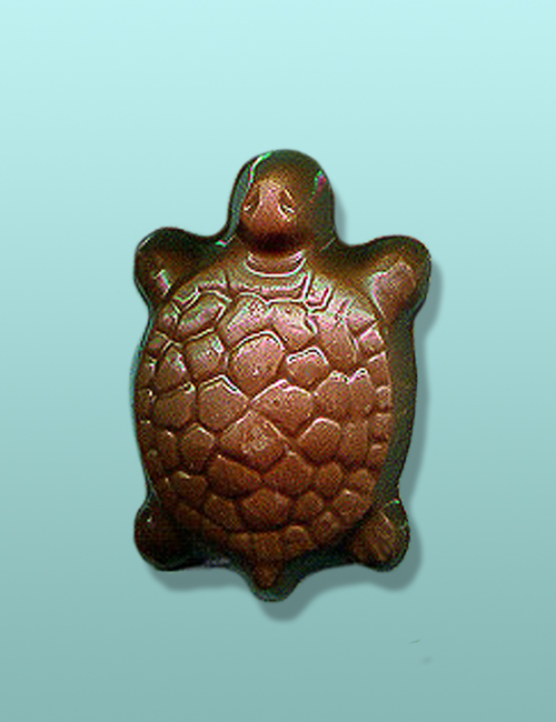 Chocolate Turtle I Party Favor