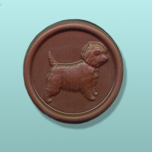 Chocolate West Highland Terrier