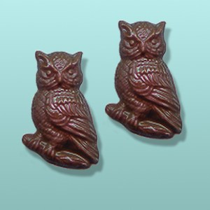 2 pc. Chocolate Owl Mini Favor