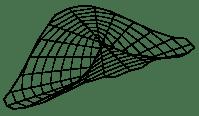 Konoid Pluckera A3