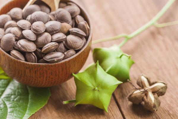 단백질, 오메가 3가 풍부한 사차인치 효능 부작용