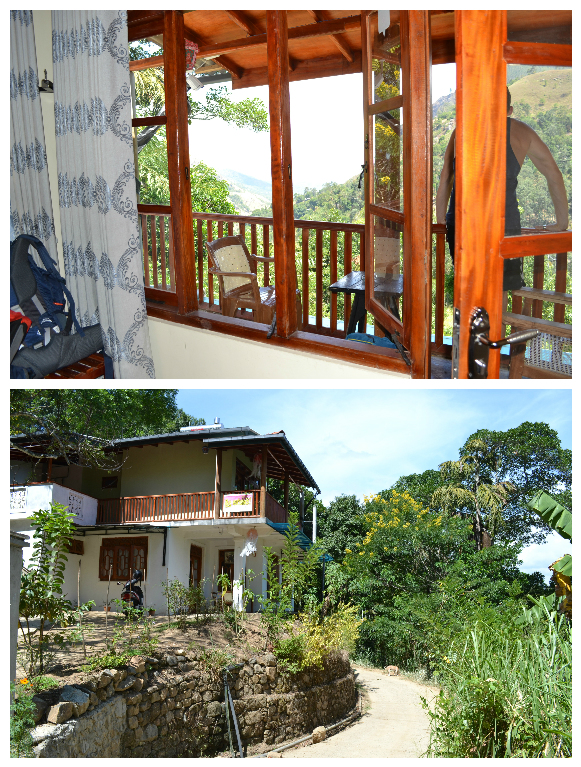 blue ribbon homestay