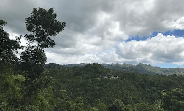 Pflanzenvielfalt Philippinen
