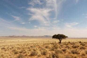 namibia ferngeweht