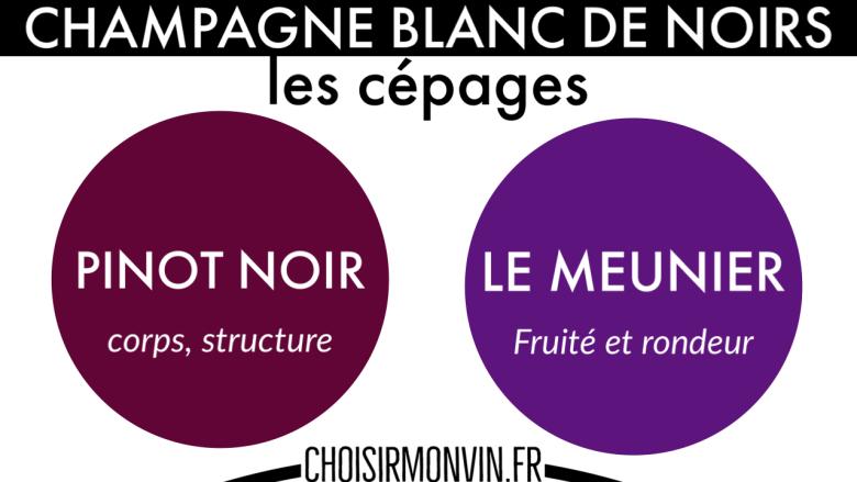 infographie champagne blanc de noirs pinot noir meunier