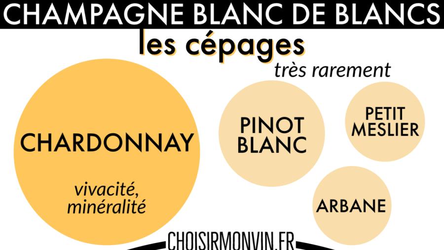 infographie champagne blanc de blancs cépages