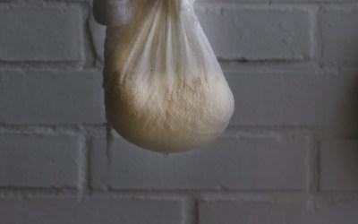 Como hacer queso ricotta en casa