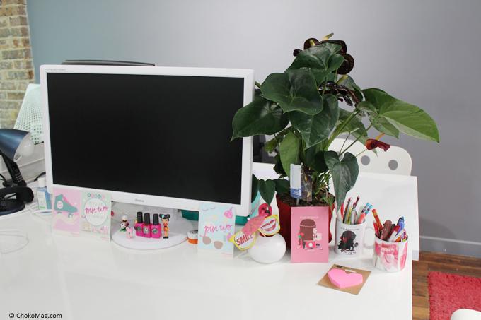 LAnthurium La Plante Fleurs De Mon Bureau