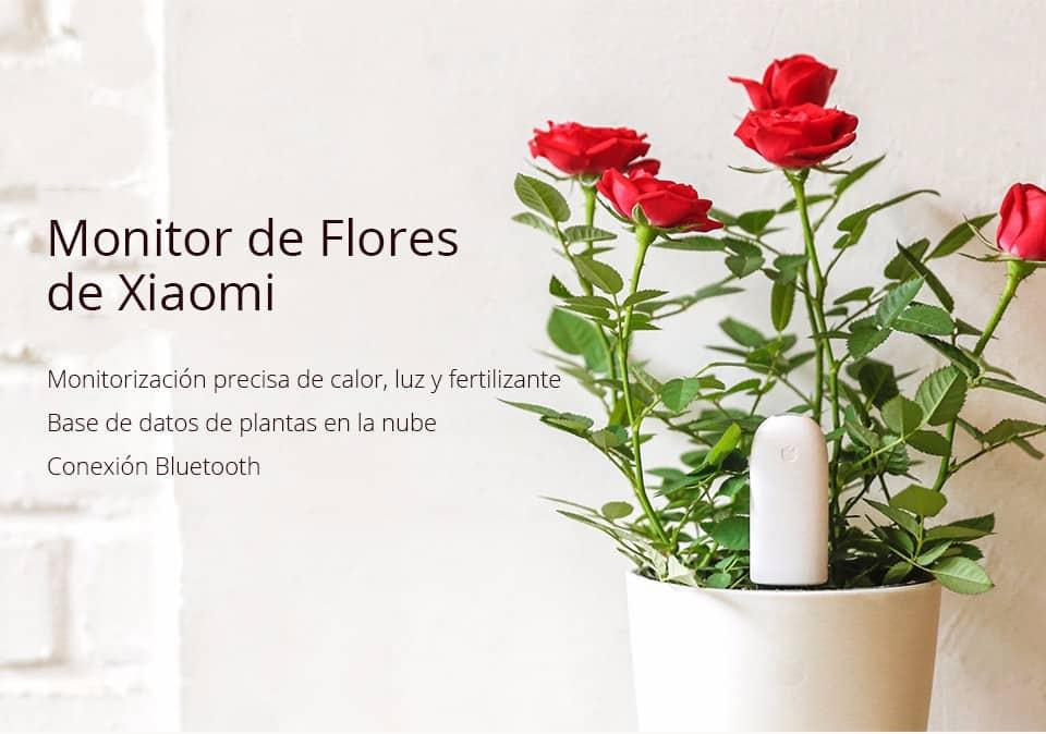 Oferta sensor remoto para plantas Xiaomi Mi Plant por 13 euros (Oferta FLASH)