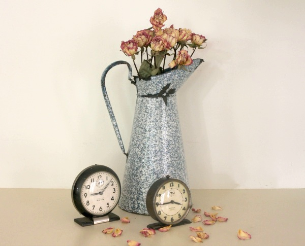 Dried-roses-3-French-water-Pitcher