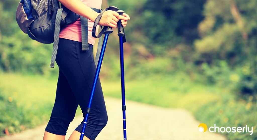 Best Trekking Pole