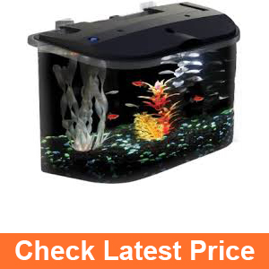 API Panaview Aquarium Kit