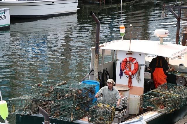 Make A Fish Trap for Big Fish