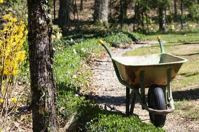 10 Uses of Wheelbarrow in the farm