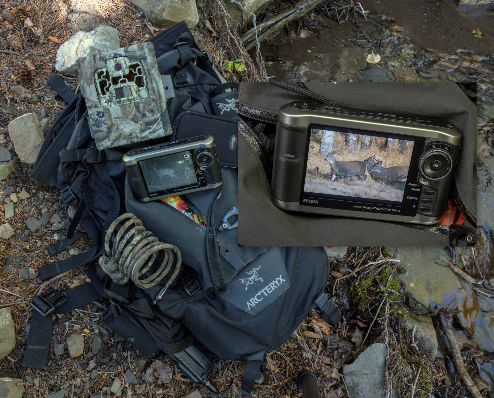 How Do Trail Cameras Work 2