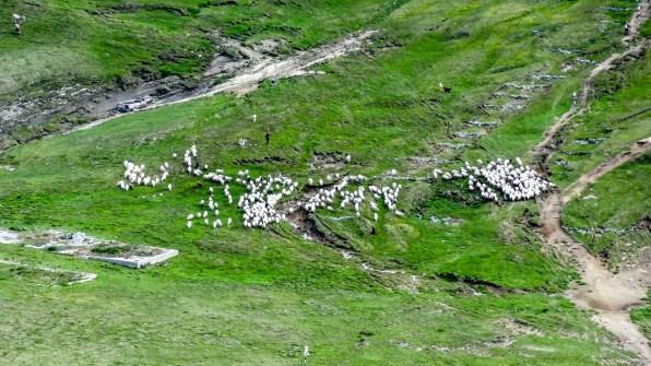 (Ł)owiecki...