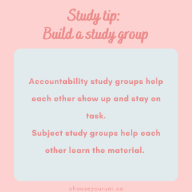 """Light pink background with dark pink title that reads, """"Study tip: Build a study group."""" A light blue textbox has dark pink text that reads, """"Accountability study groups help each other show up and stay on task. Subject study groups help each other learn the material."""" and small print at the bottom that reads """"Chooseyouruni.ca."""""""