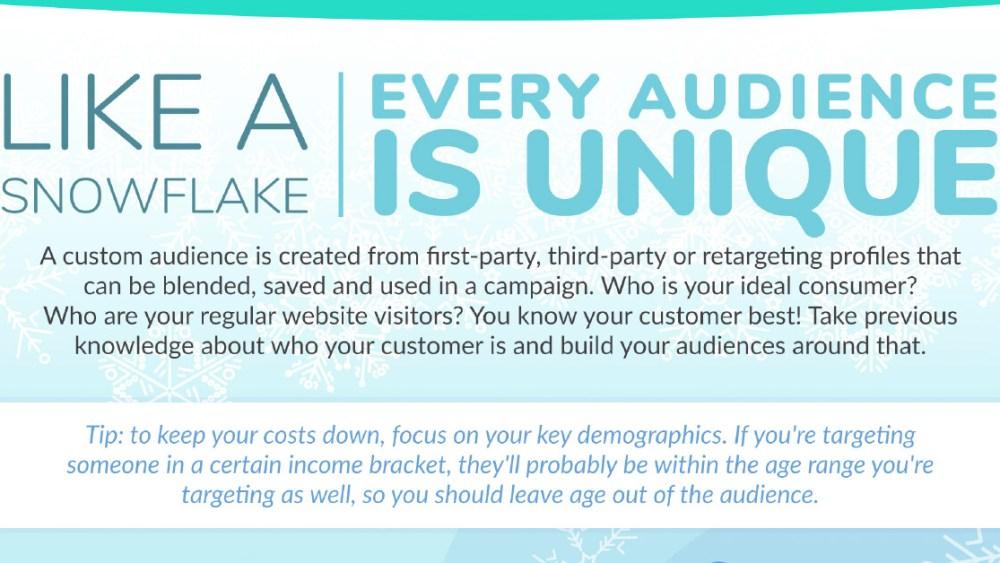 Building Digital Advertising Audiences