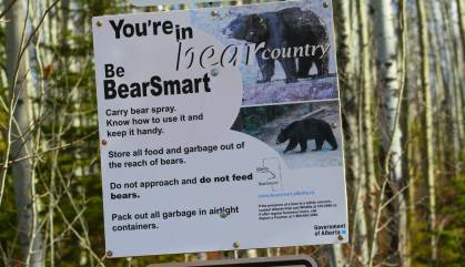 sign bear country