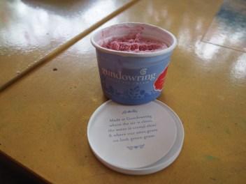 Gundowring ice cream