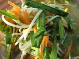 Vietnamese Pickled Bean Sprout (Dua Gia)