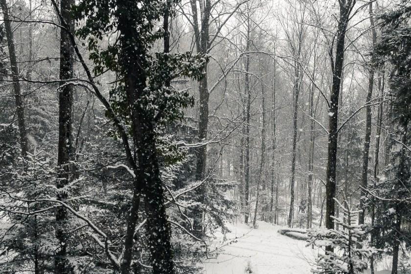 C21_winter_advent