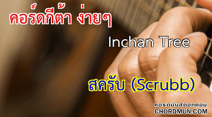 คอร์ด เพลง Inchan Tree
