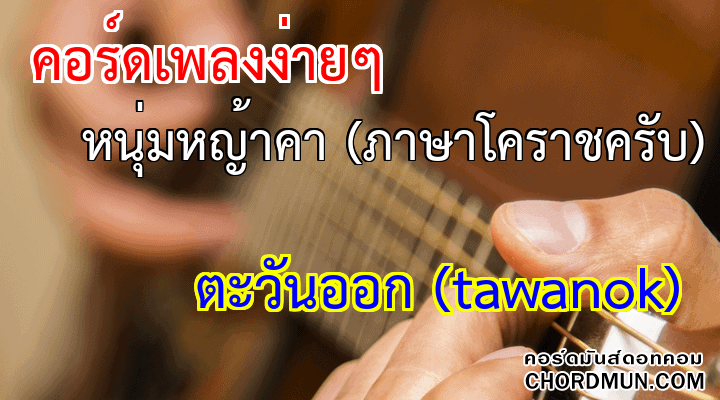 คอร์ดกีตาร์ ง่าย เพลง หนุ่มหญ้าคา (ภาษาโคราชครับ)