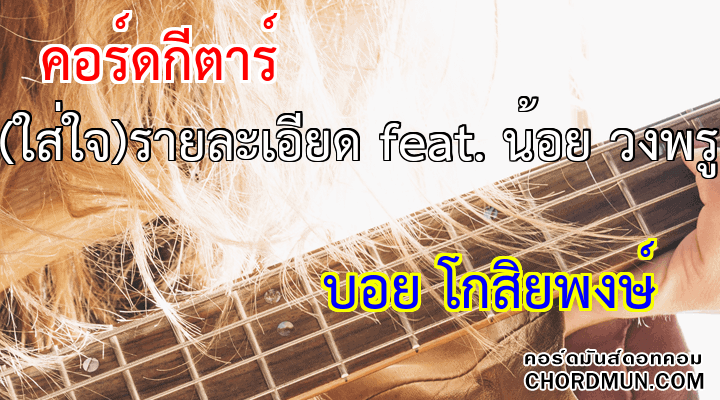 คอร์ดกีต้าร์ง่ายๆ เพลง (ใส่ใจ)รายละเอียด feat. น้อย วงพรู