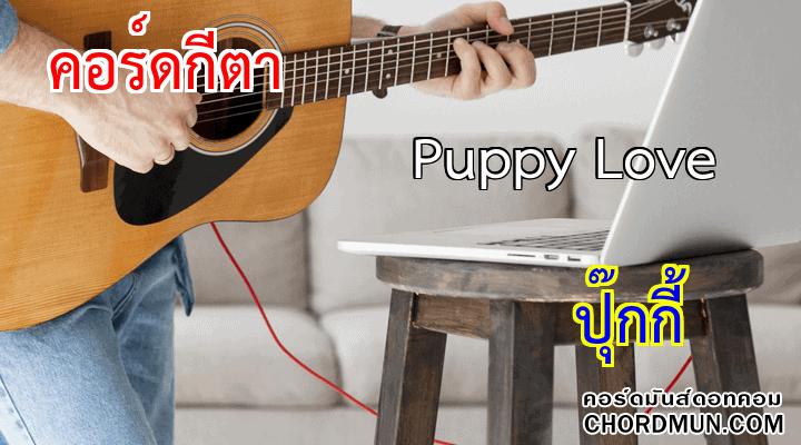 คอร์ดกีตา เพลง Puppy Love