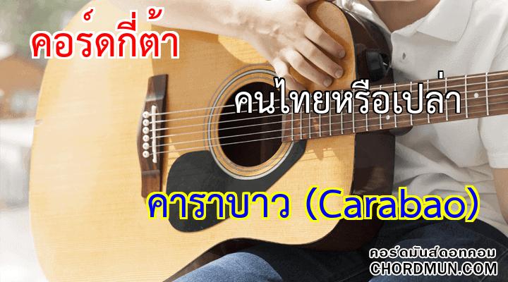 คอร์ดกีต้า ง่ายๆ เพลง คนไทยหรือเปล่า