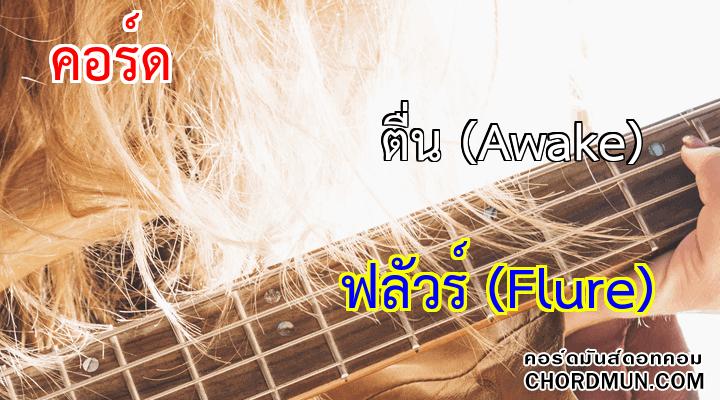 คอร์ดกีต้าร์มือใหม่ เพลง ตื่น (Awake)