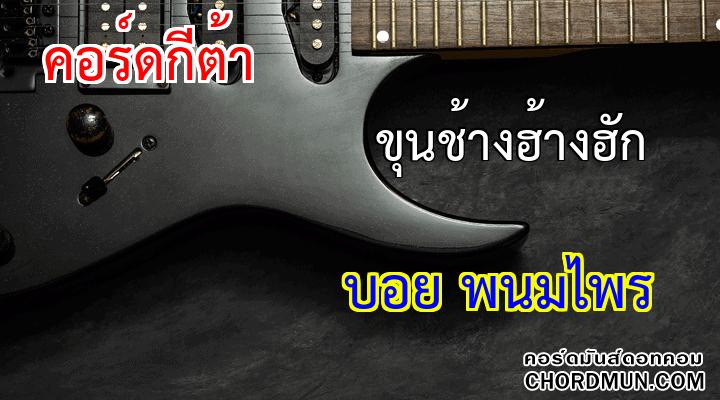 คอร์ดกีต้าร เพลง ขุนช้างฮ้างฮัก