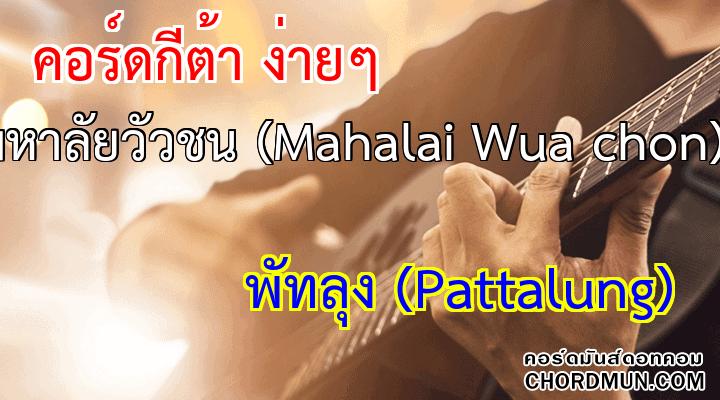คอร์ดกีตาร์พื้นฐาน เพลง มหาลัยวัวชน (Mahalai Wua chon)