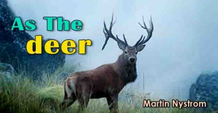 As the deer chords-Martin Nystrom