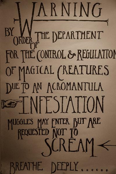 Magical creatures....