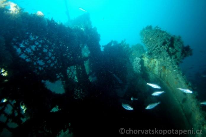 Ve vraku, potápění v Chorvatsku