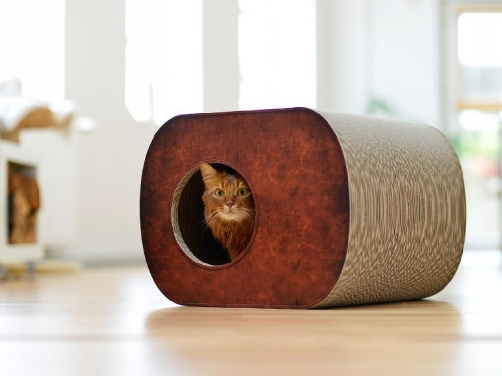les meilleures niches pour chat