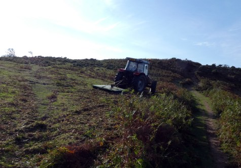 "Using a tractor and ""topper"" to keep the bracken at bay ( R Hales)"