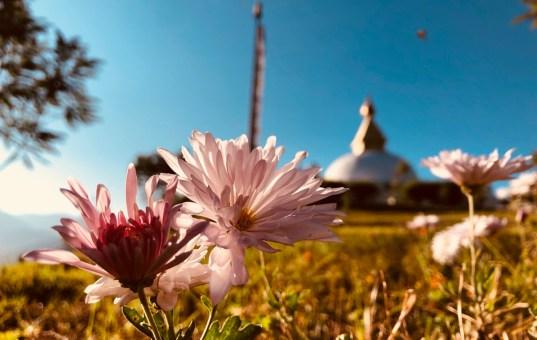 蜜月,就去不丹吧!(下)