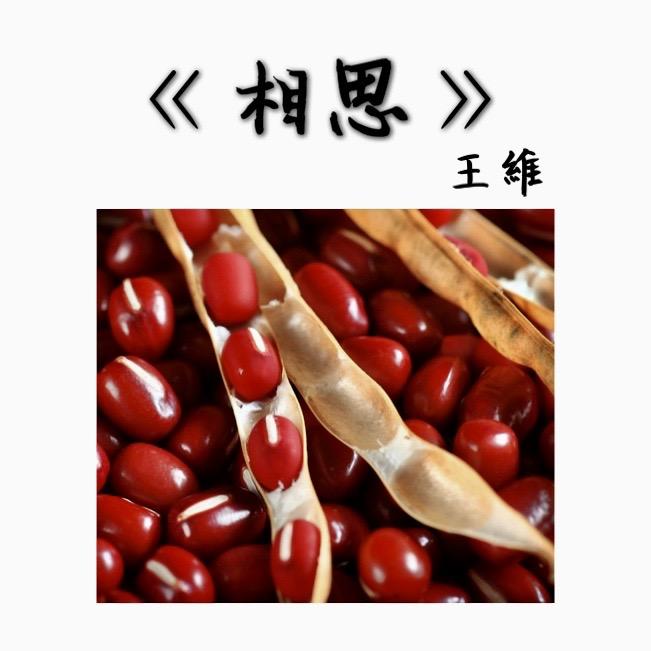 07 《相思》王維