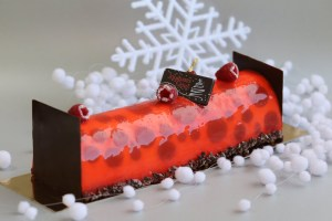 Read more about the article Buche coccinelle