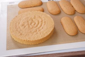 Disque de biscuit cuillère