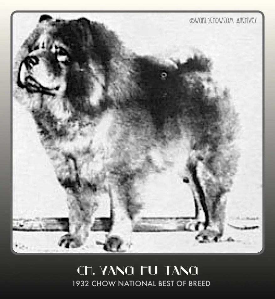 1932 Ch. Yang Fu Tang