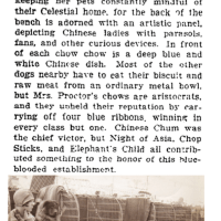 1905 UNIQUE CHOW EXHIBIT AT WESTMINSTER