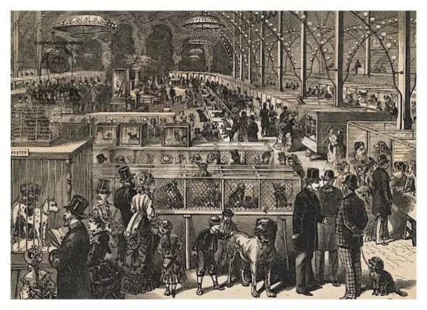 Crufts Benched show 1880
