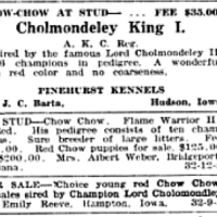 1918 LORD CHOLMONDELEY POISIONED AT SHOW